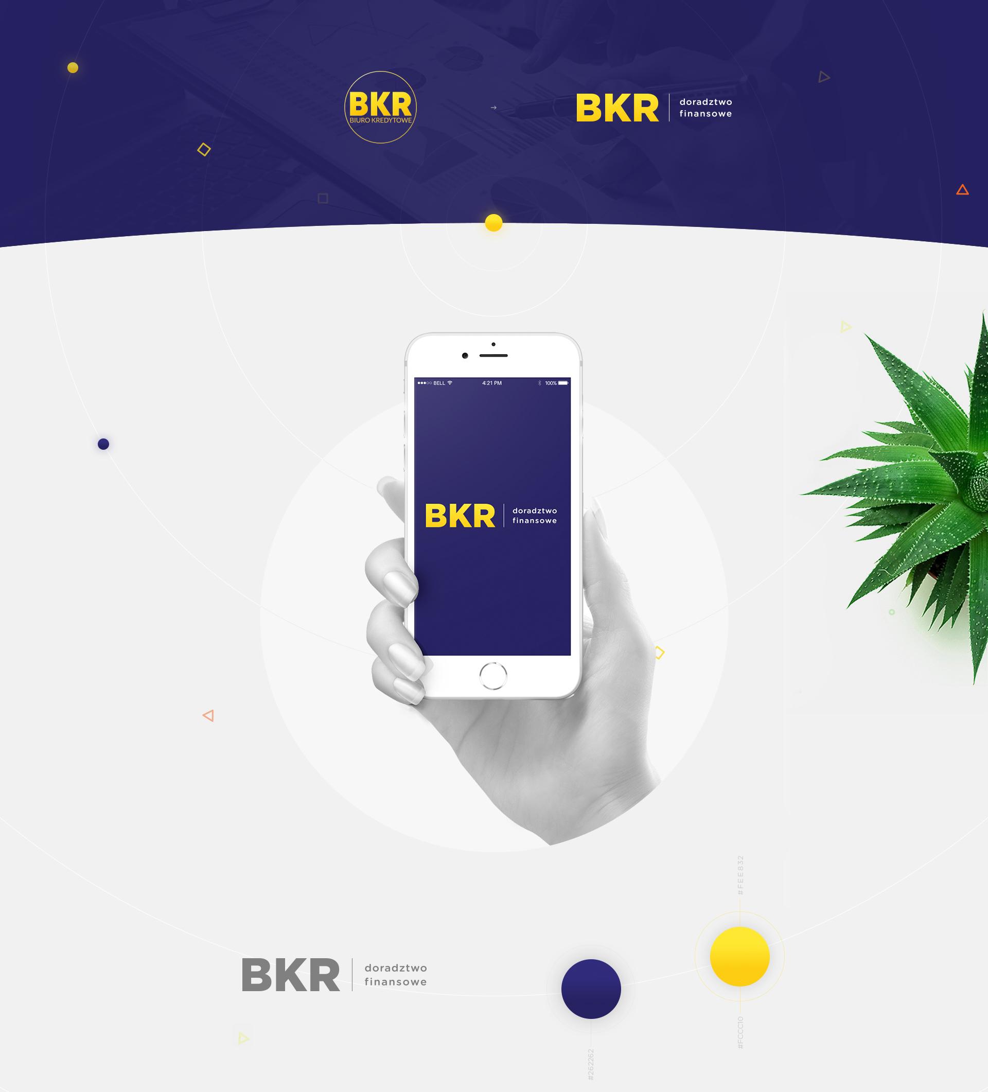 BKR - Realizacja - Agencja ROXART