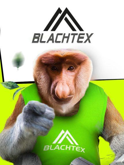 Roxart portfolio - Blachtex